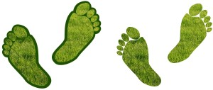 pieds-herbe-earthing